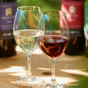 【満員御礼】ワインの基本知識講座&贅沢ワインランチ in 岩の原葡萄園